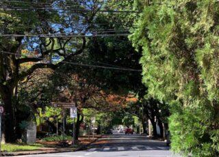 Cidade Jardim