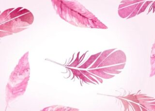 Foto pena rosa